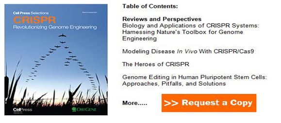 CRISPR book